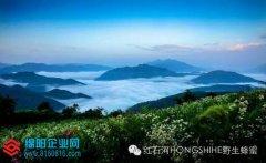 青川县唐家河野生资源开发有限责